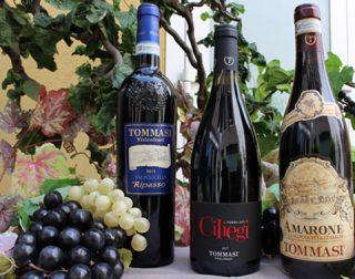 vino tommasi gastronomia piazza