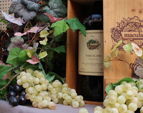 vino gastronomia piazza